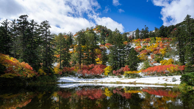 Multiple Seasons (in colour) - Nature photo contest ...
