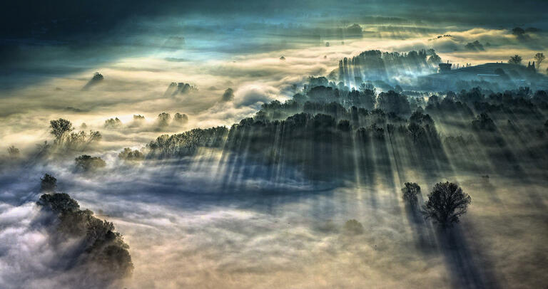 Giulio Montini  with 'Morning Fog'