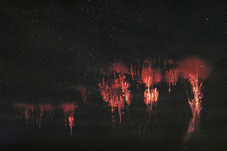 Nathan Myhrvold with 'Sprite Fireworks'