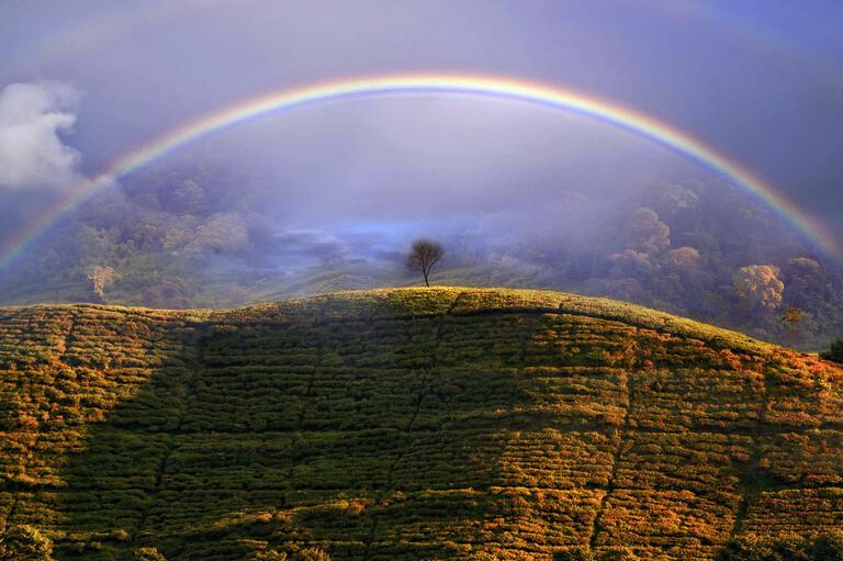 Dani Agus Purnomo with 'Misty Rainbow'